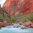 Stock Video: Colorado River at bottom of Grand Canyon
