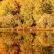 Colorful Aspen Trees Reflecting in Mountain Lake — Stock Video #15356219