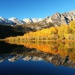 Colorful Aspen Trees Reflecting in Mountain Lake - Stock Photo