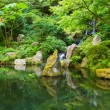 Beautiful Japanese Garden — Stock Photo #29970335