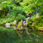 japanischer garten — Stockfoto