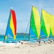Sail Boats on Tropical Beach — Stock Photo #30118351