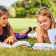 Kids Reading Books — Stock Photo #31189959
