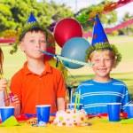 Kids Birthday Party — Stock Photo #31190567
