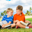 Boys Reading Books — Stok fotoğraf