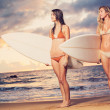 Beautiful Sexy Surfer Girls on the Beach at Sunset — Stock Photo