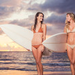 Stock Photo: Beautiful Sexy Surfer Girls on the Beach at Sunset