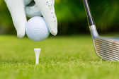 Close up view of golf ball on tee on golf course — Stock Photo