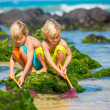 two young boys having fun on tropcial beach — Stock Photo