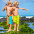 Stock Photo: two young boys having fun on tropcial beach