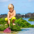 Happy Young boy having fun at beach, playing with fishing ne — Stock Photo #35184383