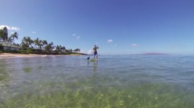 Man Stand Up Paddling in Hawaii — Stock Video