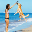 Woman Playiing with Dog Jumping into the Air — Stock Photo #43700989