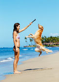 Woman Playiing with Dog Jumping into the Air — Stock Photo