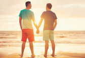 Gay couple watching sunset — 图库照片