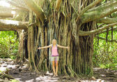 Woman standing in front of banyan tree — Stock Photo