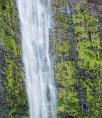 Tropical waterfall in Hawaii — Stock Photo