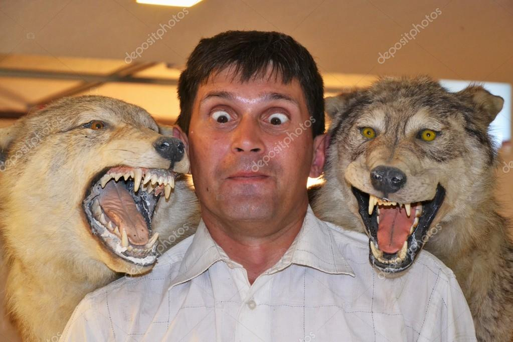 The Man and the Wolves  Stock Photo #13364869