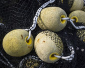 Floatings and net for fishing — Stock Photo