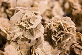 Desert rose, Rosette-Formationen — Stockfoto