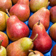 Red and green pears - Stock Photo