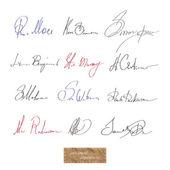 Signature — Stock Vector