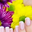 French manicure made — Stock Photo