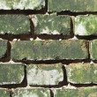 Grunge brick wall. — Stock Photo