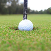 Golf hole in one — Stock Photo