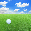 White golf ball against the green grass — Стоковая фотография