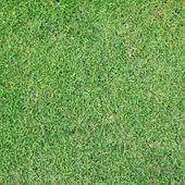 Fondo verde golf — Foto de Stock