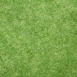 Green grass background — Stockfoto #37755673