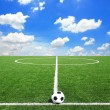 pallone da calcio in gol — Foto Stock