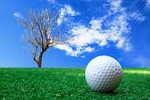 Golf-ball on course — Stock Photo