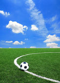 Soccer Football on the Green Grass Texture in Soccer Field with — Stock Photo