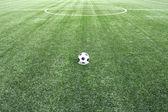 Fotbalový stadion pole trávy lin — Stock fotografie
