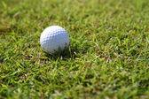 Golf balls on green grass background — Stock Photo
