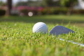 Golf balls and Driver on green grass background — Stock Photo