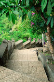 Stairway to jungle, Pura Uluwatu, Bali, Indonesia — Stock Photo