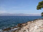 Coast from dalmatia in croatia — Stock Photo