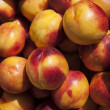 Ripe plums close-up shot — ストック写真