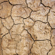 Texture of cracked earth — Stockfoto