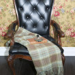 Stock Photo: Comfortable upholstered chair