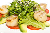 Scallops grilled with avocado and tomatoes — Stock Photo