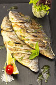 Sea fish cooked on the grill — Stock Photo