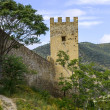 Stock Photo: Tower of ancient castle