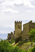 Tower of the ancient castle — Stock Photo