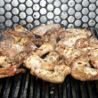 Wings Grill — Stock Photo