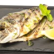 Sea fish cooked — Stockfoto
