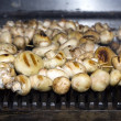 Stock Photo: Mushrooms grilling